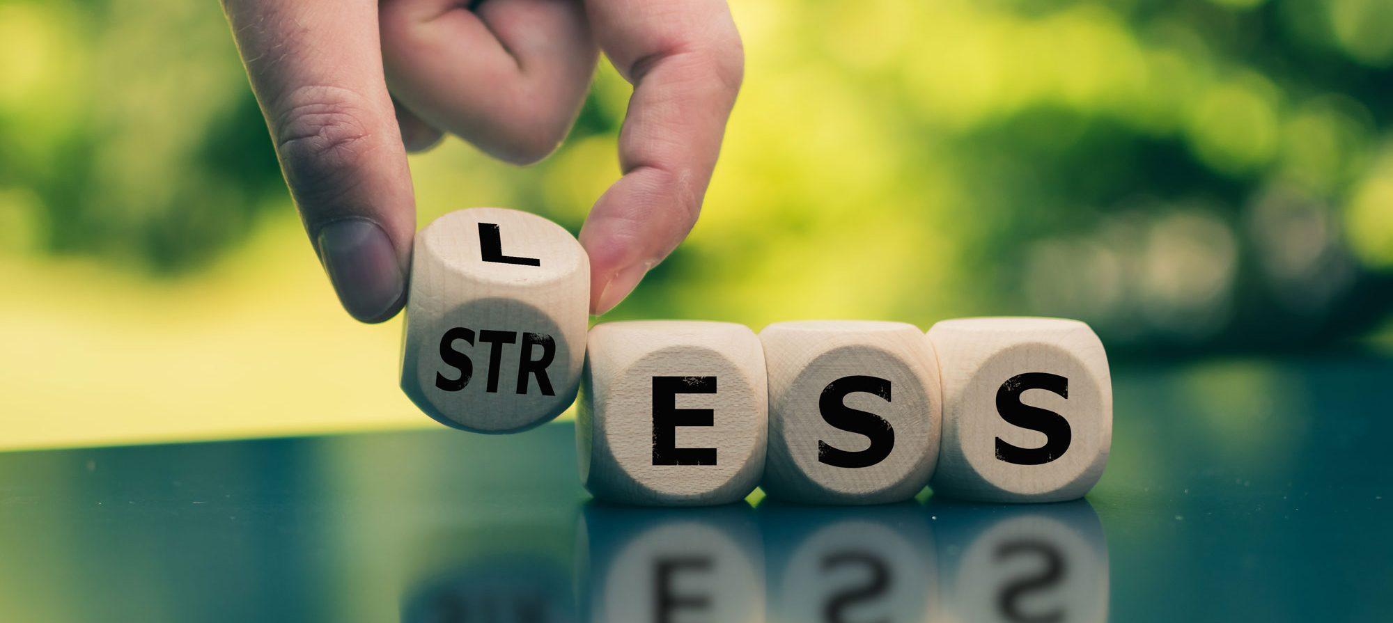 Lebensmittel gegen Stress Nervennahrung